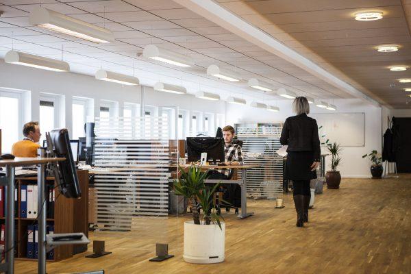 Bureaux d'entreprise en open space